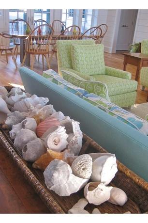 seashells in basket livingroom