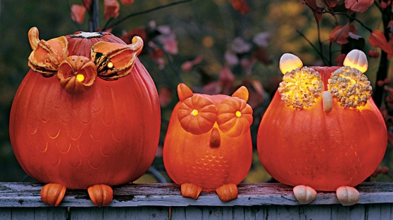 creative-pumpkin-designs