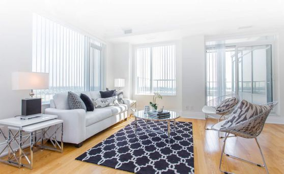 professional-organizer-Livingroom
